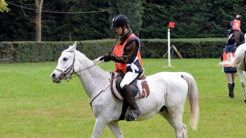 Equitazione Paralimpica 5-3